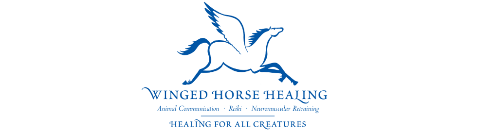 Winged Horse Healing